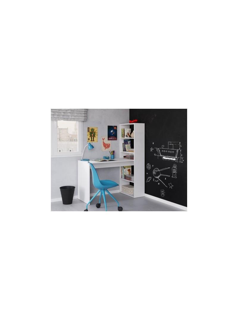 Escritorio + estantería